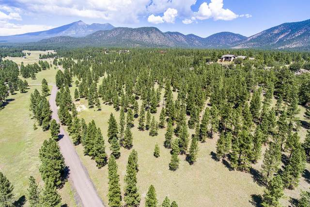 2274 N San Francisco Street, Flagstaff, AZ 86001 (MLS #182945) :: Maison DeBlanc Real Estate