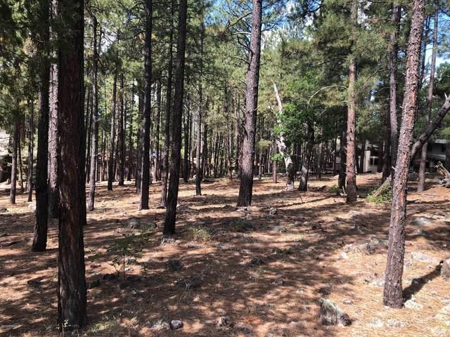 3977 Griffiths Spring, Flagstaff, AZ 86005 (MLS #182962) :: Keller Williams Arizona Living Realty