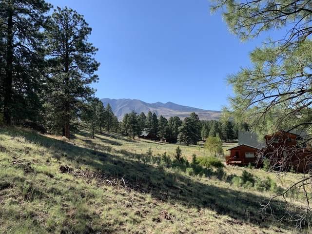 11668 N Rope Arabian Road, Flagstaff, AZ 86004 (MLS #183047) :: Flagstaff Real Estate Professionals