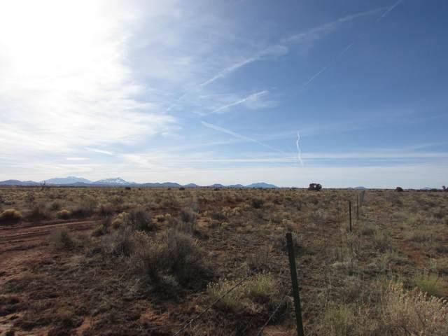 3587 S Grand Canyon Boulevard #834, Williams, AZ 86046 (MLS #183172) :: Keller Williams Arizona Living Realty