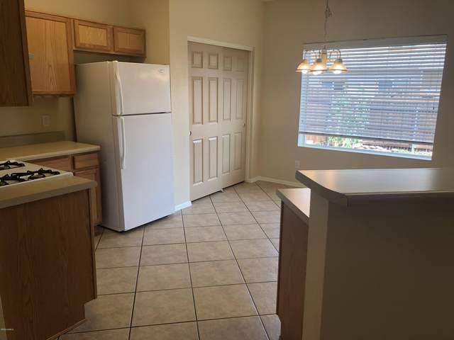 9127 Slate Mountain Trl Trail, Bellemont, AZ 86015 (MLS #183222) :: Keller Williams Arizona Living Realty