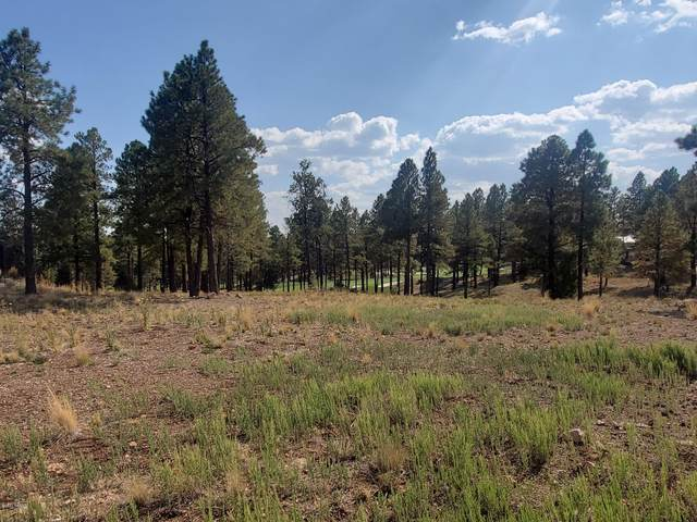 3879 S Clubhouse Circle, Flagstaff, AZ 86005 (MLS #183289) :: Keller Williams Arizona Living Realty