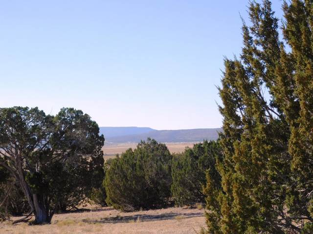 Lot 678 Svr  Mandolin Drive, Seligman, AZ 86337 (MLS #183522) :: Keller Williams Arizona Living Realty