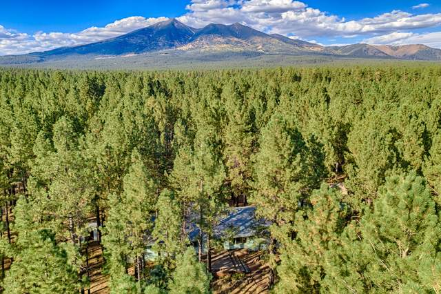 3150 Forest Hills Drive, Flagstaff, AZ 86001 (MLS #183524) :: Keller Williams Arizona Living Realty
