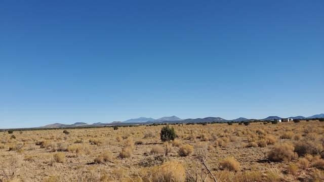 3757 S Parker Drive #251, Williams, AZ 86046 (MLS #183560) :: Keller Williams Arizona Living Realty