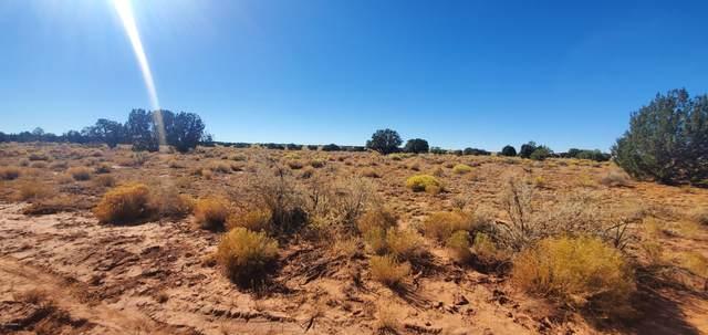 2714 Waverly Drive, Williams, AZ 86046 (MLS #183564) :: Keller Williams Arizona Living Realty