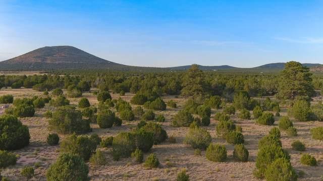 1191 E Hoctor Road, Williams, AZ 86046 (MLS #183574) :: Keller Williams Arizona Living Realty