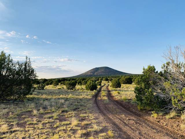 1191 E Hoctor Road, Williams, AZ 86046 (MLS #183576) :: Keller Williams Arizona Living Realty