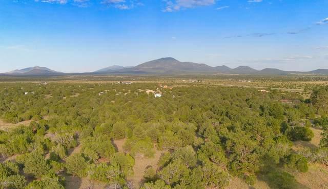 1191 E Hoctor Road, Williams, AZ 86046 (MLS #183578) :: Keller Williams Arizona Living Realty