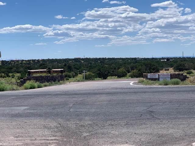 11790 S Blackbird Way #443, Williams, AZ 86046 (MLS #183583) :: Keller Williams Arizona Living Realty