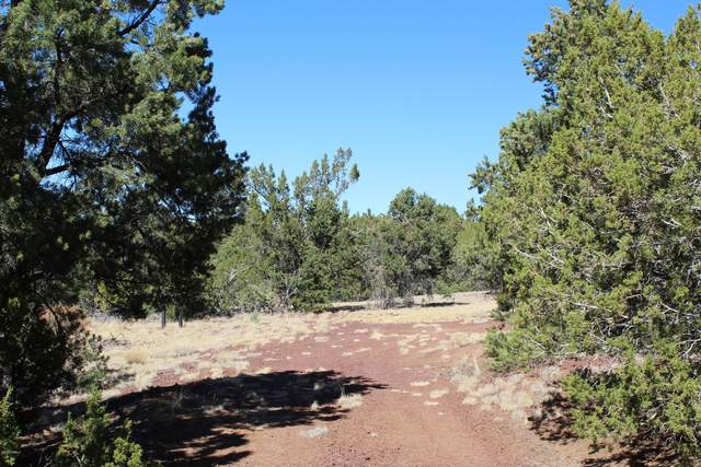 6465 High Country Lane, Williams, AZ 86046 (MLS #183584) :: Keller Williams Arizona Living Realty