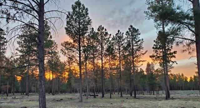 ---- Forest Rd 122 Tract 9A, Happy Jack, AZ 86024 (MLS #183622) :: Keller Williams Arizona Living Realty