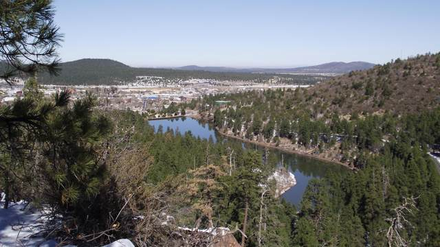 1670 Canyon View Loop, Williams, AZ 86046 (MLS #183805) :: Maison DeBlanc Real Estate