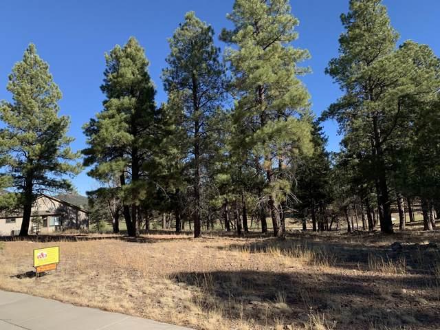 911 S Torrey Pines Drive #192, Williams, AZ 86046 (MLS #183840) :: Keller Williams Arizona Living Realty