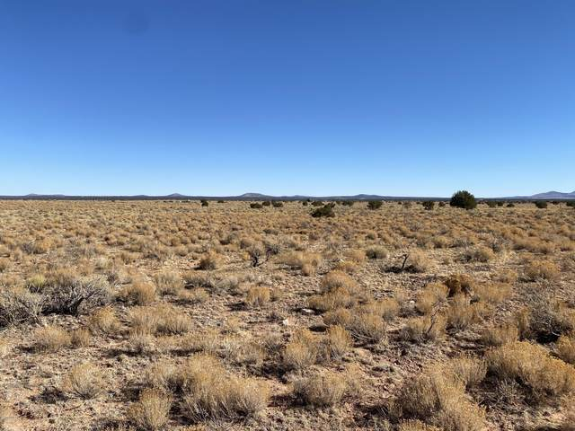 2467 Carmen Road, Williams, AZ 86046 (MLS #183927) :: Keller Williams Arizona Living Realty