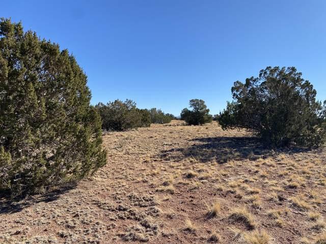 3674 Canyon Vista Road #10, Williams, AZ 86046 (MLS #183928) :: Keller Williams Arizona Living Realty