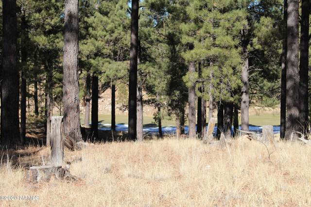 2460 E Del Rae Drive, Flagstaff, AZ 86005 (MLS #184098) :: Keller Williams Arizona Living Realty