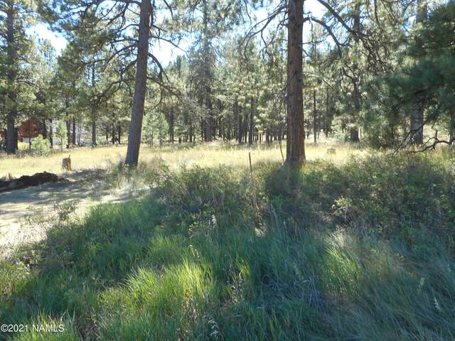 Three Lost Boulders Estates, Munds Park, AZ 86017 (MLS #184288) :: Keller Williams Arizona Living Realty