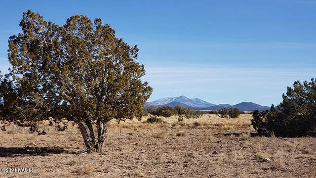 8758 S Big Bear Road #461, Williams, AZ 86046 (MLS #184345) :: Keller Williams Arizona Living Realty