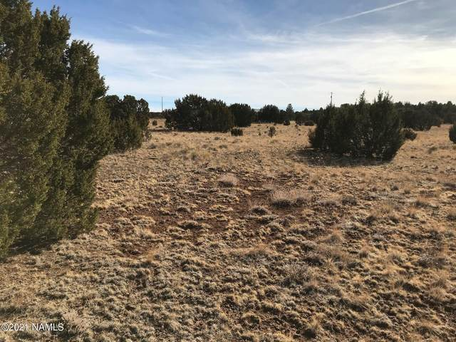 1608 E Prospect Lane, Williams, AZ 86046 (MLS #184355) :: Maison DeBlanc Real Estate