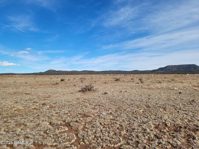 36.73 Acre - Parcel # 301-24-320, Seligman, AZ 86337 (MLS #184596) :: Keller Williams Arizona Living Realty