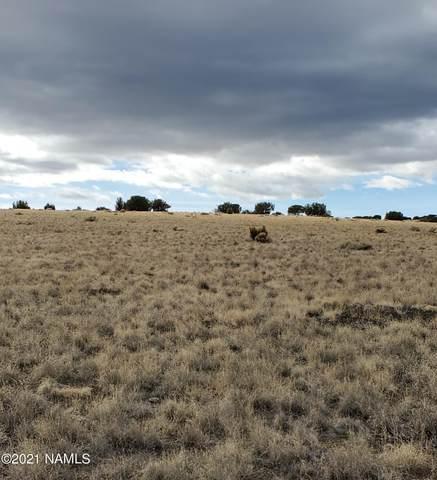 30347001-N Alpine Ranches, Flagstaff, AZ 86004 (MLS #184667) :: Keller Williams Arizona Living Realty
