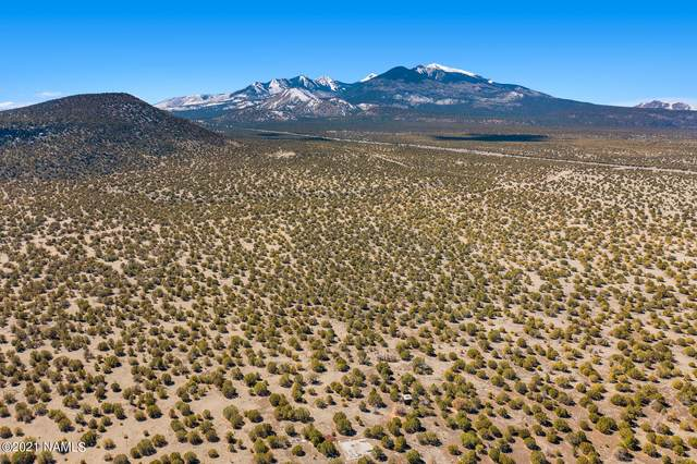5319 Forest Service 546 Road, Flagstaff, AZ 86004 (MLS #184979) :: Flagstaff Real Estate Professionals