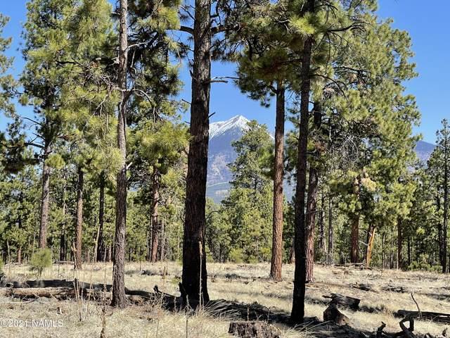 2k Hidden Hollow Road, Flagstaff, AZ 86001 (MLS #185268) :: Keller Williams Arizona Living Realty