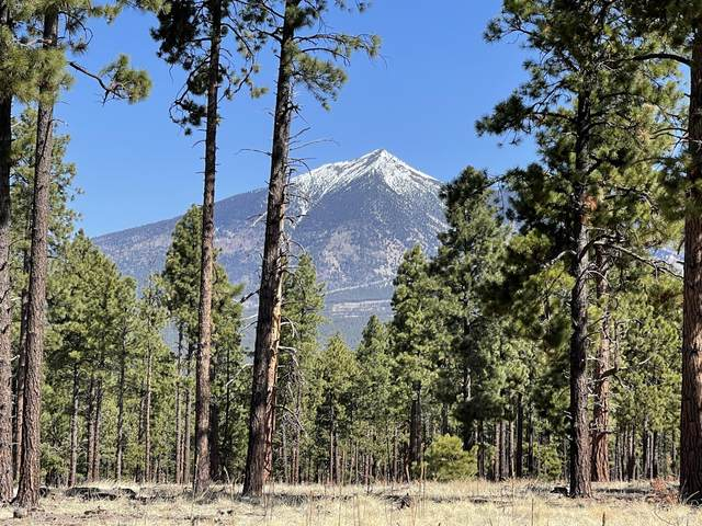 2j Hidden Hollow Road, Flagstaff, AZ 86001 (MLS #185270) :: Keller Williams Arizona Living Realty