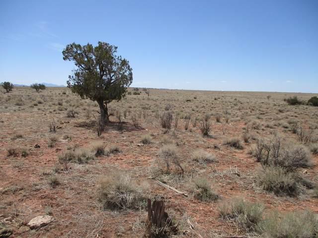 6232 S Prairie Grass Lane #294, Williams, AZ 86046 (MLS #185272) :: Keller Williams Arizona Living Realty