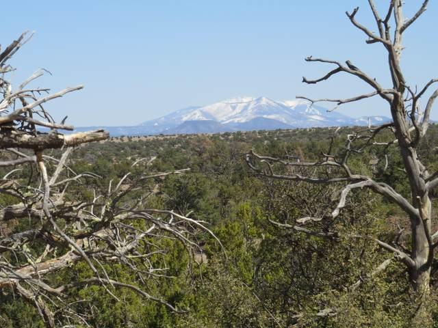 5386 S Sun Dog Trail, Williams, AZ 86046 (MLS #185276) :: Flagstaff Real Estate Professionals