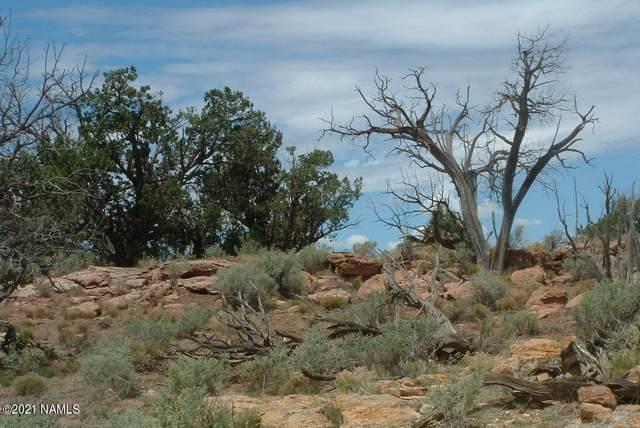 2123 Pine Road #403, Williams, AZ 86046 (MLS #185288) :: Keller Williams Arizona Living Realty