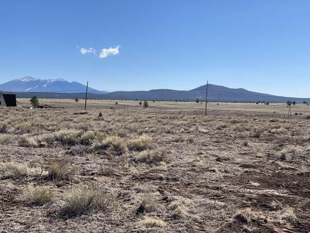 10981 Horse Hill Trail, Parks, AZ 86018 (MLS #185349) :: Keller Williams Arizona Living Realty