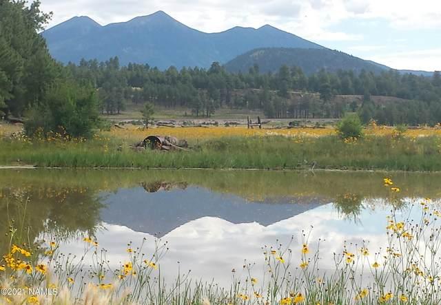 6812 Soggy Bottom Ranch Road, Flagstaff, AZ 86001 (MLS #185518) :: Flagstaff Real Estate Professionals