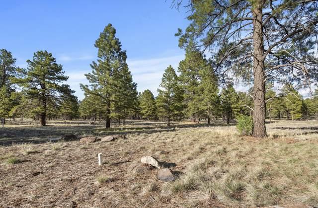 471 S Pinehurst Drive, Williams, AZ 86046 (MLS #185525) :: Keller Williams Arizona Living Realty