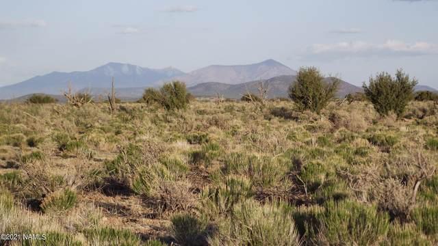 3811 S Berkley Street, Williams, AZ 86046 (MLS #185708) :: Flagstaff Real Estate Professionals