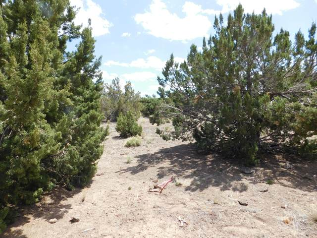 4540 Whitetail Loop #58, Williams, AZ 86046 (MLS #185716) :: Flagstaff Real Estate Professionals