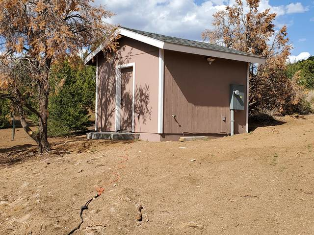 7194 N Wild Horse Drive, Williams, AZ 86046 (MLS #185766) :: Keller Williams Arizona Living Realty