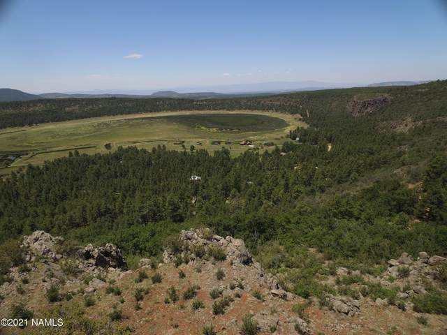 00 Ponderosa Drive, Flagstaff, AZ 86024 (MLS #185776) :: Keller Williams Arizona Living Realty