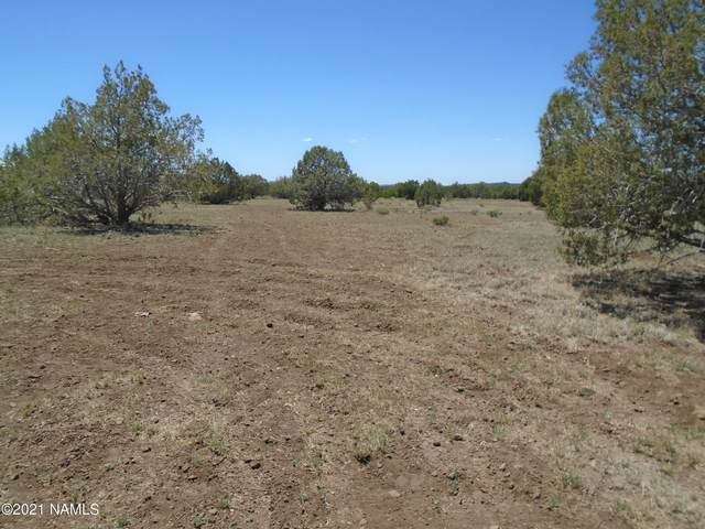 3265 N Boone Trail, Ash Fork, AZ 86320 (MLS #186022) :: Flagstaff Real Estate Professionals