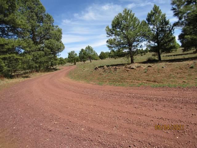 312 S Forest Service 3341 Road, Parks, AZ 86018 (MLS #186068) :: Keller Williams Arizona Living Realty
