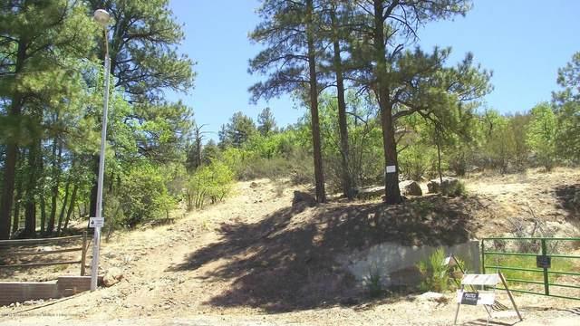 00 S Pine Street, Williams, AZ 86046 (MLS #186148) :: Flagstaff Real Estate Professionals