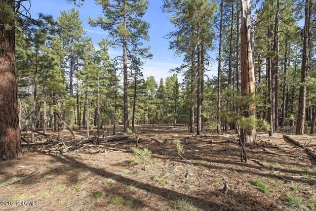 2868 Amber Way, Williams, AZ 86046 (MLS #186720) :: Keller Williams Arizona Living Realty