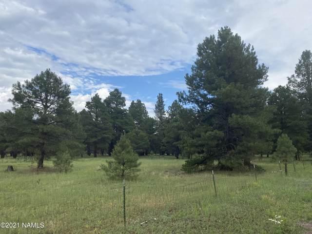 3860 Jemez, Flagstaff, AZ 86005 (MLS #186784) :: Keller Williams Arizona Living Realty