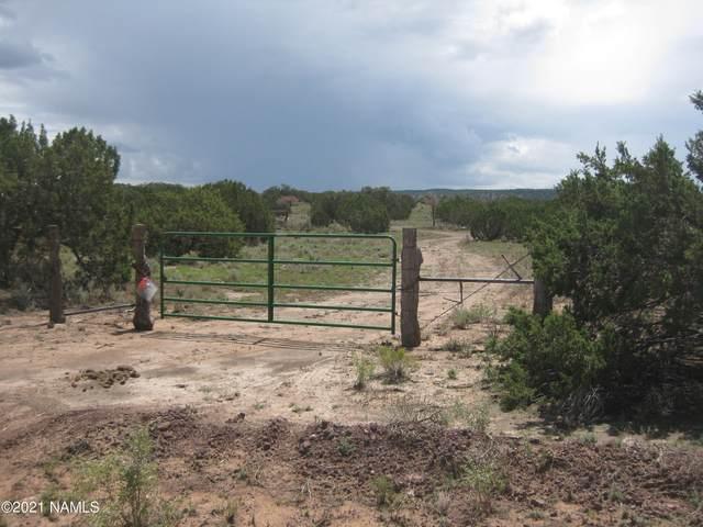 4354 Whitetail Loop #60, Williams, AZ 86046 (MLS #186805) :: Flagstaff Real Estate Professionals