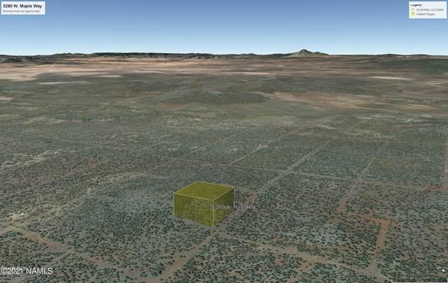 3290 Maple Way #172, Ash Fork, AZ 86320 (MLS #186843) :: Keller Williams Arizona Living Realty
