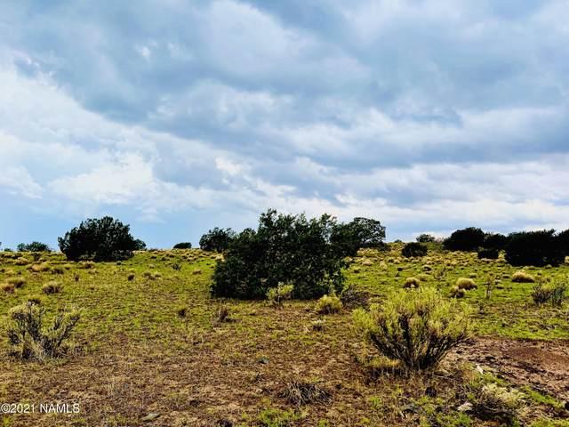 7505 S Big Bear Road, Williams, AZ 86046 (MLS #186850) :: Keller Williams Arizona Living Realty