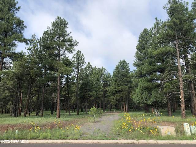 530 S Highland Meadows Drive #248, Williams, AZ 86046 (MLS #187089) :: Keller Williams Arizona Living Realty
