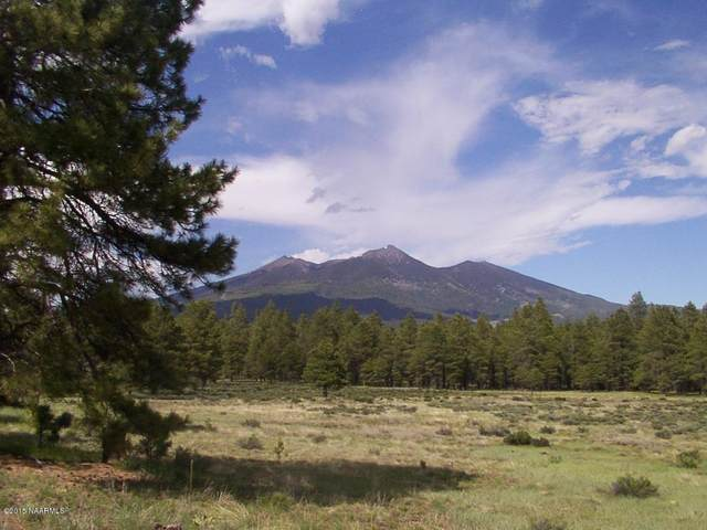 7143 N Elk Tank Road, Flagstaff, AZ 86001 (MLS #187314) :: Keller Williams Arizona Living Realty