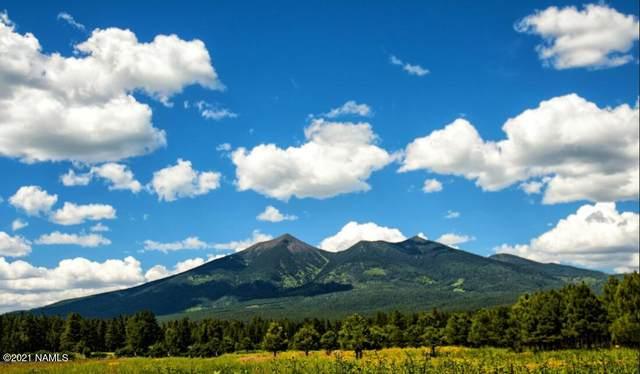 Tbd W Mt Elden Lookout Road, Flagstaff, AZ 86001 (MLS #187443) :: Keller Williams Arizona Living Realty